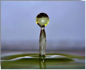 организм и вода